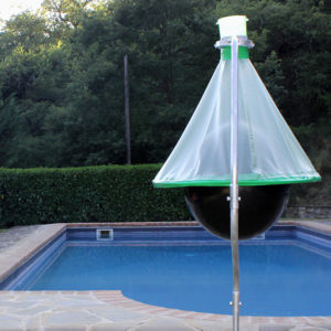 H-Trap Horsefly Trap Beside Swimming Pool
