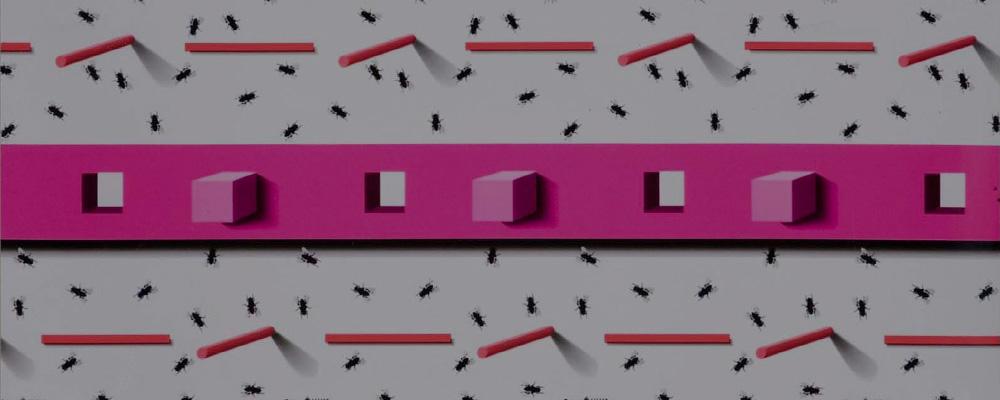 Agriline Fly Sheet Fly Trap Pattern