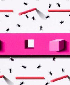 Glue Fly Trap
