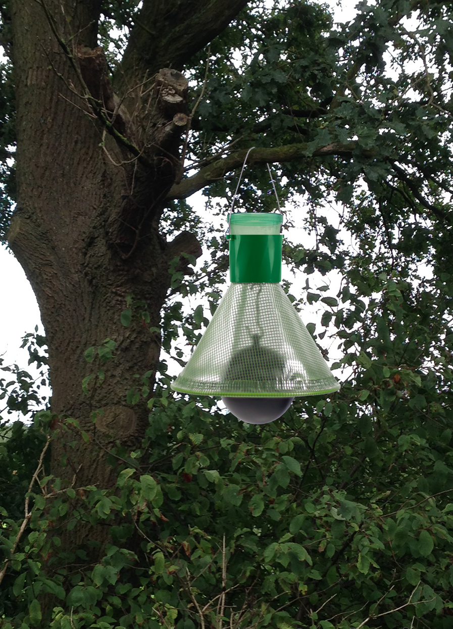 MT Trap Horsefly Trap in tree