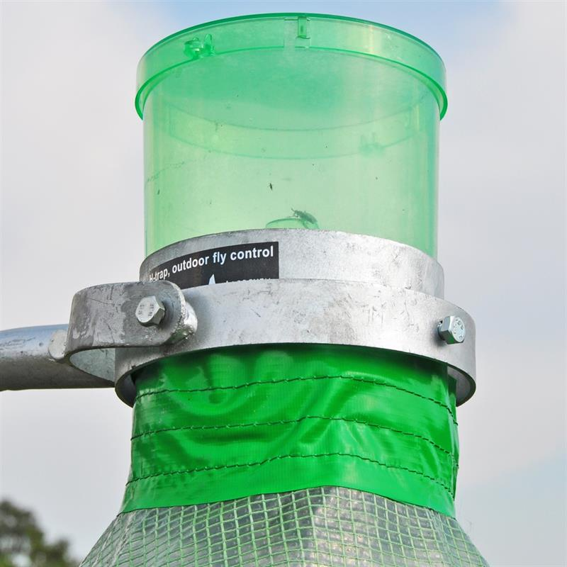 H-Trap Horsefly Catch Chamber on Trap